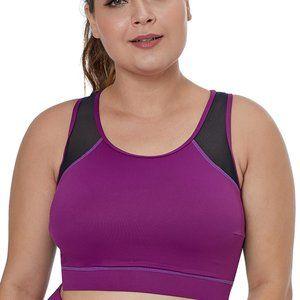 LG Purple Sheer Mesh Back Plus Size Sports Bra